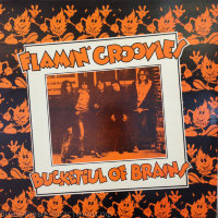 Flamin Groovies - Bucketful Of Brains